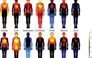 Estados emocionales y temperaturas corporales